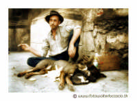 Mendicante. Uno strano quartetto: un gatto, un cane un coniglio e un mendicante. I 4 protagonisti di questa foto, si trovavano a Palermo in Corso Vittorio Emanuele accanto alla chiesa del Santissimo Salvatore. Foto Walter Lo Cascio www.walterlocascio.it  Walter Lo Cascio  - Palermo (13971 clic)