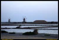 Marsala: Le Saline al Tramonto. La strada che da Trapani conduce a Marsala, costeggiando la laguna che accoglie Mozia, e' fiancheggiata da saline che offrono una vista bellissima: gli specchi d'acqua suddivisi da sottili strisce di terra formano una scacchiera irregolare e multicolore. Foto Walter Lo Cascio www.walterlocascio.it  - Marsala (2226 clic)