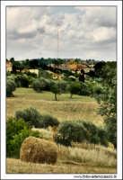 Caltanissetta. Giugno 2005. Campagna nissena. Sullo sfondo la cittadina di Caltanissetta con al centro la famosa Antenna RAI.  - Caltanissetta (3345 clic)