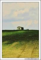 Caltanissetta. Giugno 2005. Campagna nissena. Casa rurale abbandonata. #2.  - Caltanissetta (2940 clic)