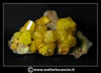 Caltanissetta: Reportage Fotografico sulle miniere. Minerali estratti dalle miniere siciliane. Collezione privata Sig. Gerlando Bennardo.  - Caltanissetta (2759 clic)
