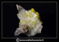 Caltanissetta: Reportage Fotografico sulle miniere. Minerali estratti dalle miniere siciliane. Collezione privata Sig. Gerlando Bennardo.  - Caltanissetta (3102 clic)