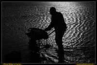 Marsala: Le Saline al Tramonto. La strada che da Trapani conduce a Marsala, costeggiando la laguna che accoglie Mozia, e' fiancheggiata da saline che offrono una vista bellissima: gli specchi d'acqua suddivisi da sottili strisce di terra formano una scacchiera irregolare e multicolore. Foto Walter Lo Cascio www.walterlocascio.it  - Marsala (2233 clic)