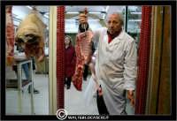 Leonforte. Una vetrina di una macelleria. Il macellaio, mi mostra l'agnellino!  - Leonforte (7196 clic)