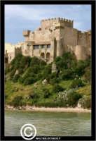 Butera - Falconara. Castello di Falconara. Costruito nel secolo XIV probabilmente su di un precedente edificio normanno, e' un caratteristico modello di fortezza medievale, con fossati, ponte levatoio, piu' ordini di mura merlate, bastioni, torrioni angolari, torri avanzate, spalti sporgenti ed al centro il mastio principale. - Reportage sui Castelli della Provincia di Caltanissetta -  - Butera (3376 clic)