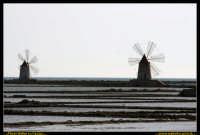 Marsala: Le Saline al Tramonto. La strada che da Trapani conduce a Marsala, costeggiando la laguna che accoglie Mozia, e' fiancheggiata da saline che offrono una vista bellissima: gli specchi d'acqua suddivisi da sottili strisce di terra formano una scacchiera irregolare e multicolore. Foto Walter Lo Cascio www.walterlocascio.it  - Marsala (2759 clic)