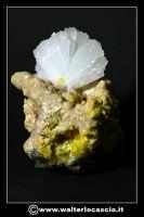 Caltanissetta: Reportage Fotografico sulle miniere. Minerali estratti dalle miniere siciliane. Collezione privata Sig. Gerlando Bennardo.  - Caltanissetta (2915 clic)