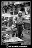Catania: Anziano al mercato della pescheria. La Pescheria e' l'antico mercato del pesce della citta' di Catania ed e' inserito nel percorso turistico per il contenuto di folklore che si respira passando fra i banchi dei pescivendoli.   - Catania (3156 clic)