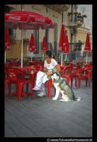 Acicastello: La ragazza e il suo Siberian Husky.  - Aci castello (3224 clic)