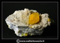 Caltanissetta: Reportage Fotografico sulle miniere. Minerali estratti dalle miniere siciliane. Collezione privata Sig. Gerlando Bennardo.  - Caltanissetta (2597 clic)