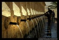 Leonforte. La GRAN FONTE. I 24 CANNOLI.  - Leonforte (4422 clic)