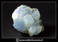 Caltanissetta: Reportage Fotografico sulle miniere. Minerali estratti dalle miniere siciliane. Collezione privata Sig. Gerlando Bennardo.  - Caltanissetta (3255 clic)