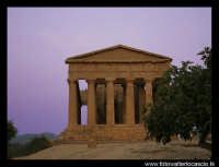 Agrigento Tempio della Concordia al tramonto.  - Agrigento (3937 clic)