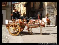 Carretto siciliano con uomo.  - Monreale (11898 clic)