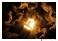 Catania: Festa di Sant'Agata. 5 Febbraio 2005: Festa della Patrona di Catania, Sant'Agata. Devoti si riscaldano con i loro ceroni.  - Catania (2515 clic)