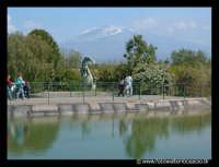 Parco Zoo di Paternò  - Paternò (5039 clic)