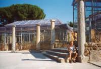 Scavi archeologigi Villa Romana del Casale a Piazza Armerina (Marco)  - Piazza armerina (5022 clic)