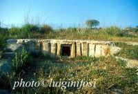 Cava d'Ispica - tomba a finti pilastri  - Ispica (3976 clic)