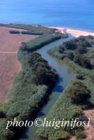 veduta aerea della foce del fiume irminio  - Irminio (5709 clic)