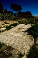 la casa dei mosaici  - Mozia (4384 clic)