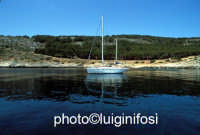 barca alla cala  - Levanzo (2950 clic)