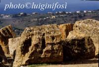 resti del tempio di giunone  - Agrigento (2104 clic)