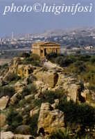 valle dei templi e tempio della concordia  - Agrigento (1888 clic)