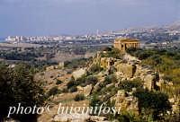 valle dei templi e tempio della concordia  - Agrigento (2382 clic)