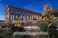 il tempio di segesta  - Segesta (1428 clic)