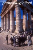 turisti in visita a segesta  - Segesta (1717 clic)