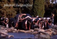 edipo re edizione 2004  - Siracusa (1438 clic)