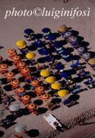 la spiaggia di san vito lo capo vista dall'alto  - San vito lo capo (2604 clic)