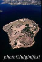 l'isola di mozia nello stagnone di marsala  - Mozia (3846 clic)
