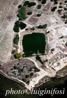 il coton nell'isola di mozia  - Mozia (3401 clic)