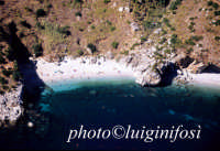 la spiaggetta della riserva vista dall'alto   - Riserva dello zingaro (9616 clic)