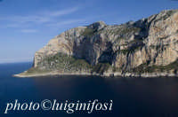 capo gallo in una veduta aerea  - Palermo (3241 clic)