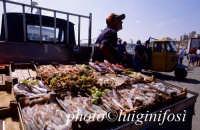 pescivendolo ambulante presso il porto di sciacca  - Sciacca (8410 clic)