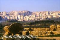 resti del tempio di Ercole  - Agrigento (4611 clic)