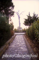 la tomba di Pirandello al Caos  - Agrigento (4693 clic)
