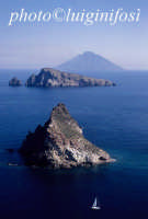 le isole minori di panarea in una veduta aerea  - Panarea (4522 clic)