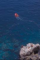 bagnanti sulle scogliere di taormina  - Taormina (4605 clic)