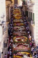 via nicolaci durante l'infiorata 2008  - Noto (1894 clic)