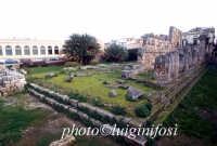 tempio di apollo  - Siracusa (6997 clic)