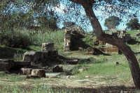 Mura Timoleontee di Capo Soprano  - Gela (12950 clic)