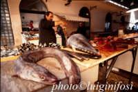 il mercato del pesce  - Marsala (5193 clic)