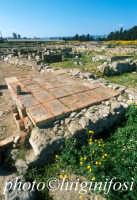 Megara Hiblea - mosaici  - Augusta (4368 clic)