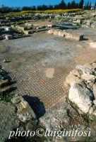 Megara Hiblea - mosaici  - Augusta (3737 clic)