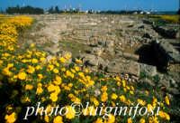 Megara Hiblea - scavi città  - Augusta (3521 clic)