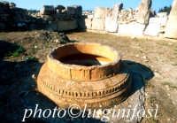 Megara Hiblea - scavi   - Augusta (4293 clic)