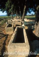 Megara Hiblea - il cimitero  - Augusta (6240 clic)
